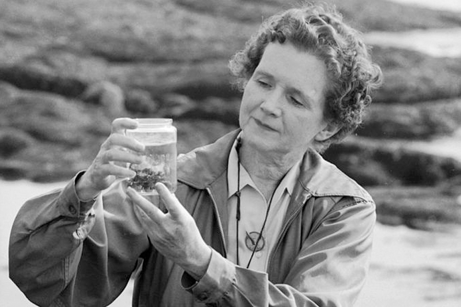 The Story of Silent Spring