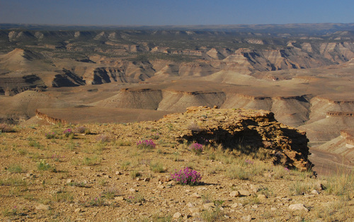 Desolation Canyon proposed wilderness area .jpg