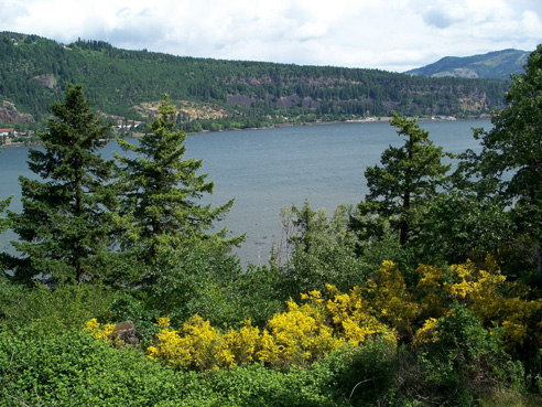 photo of Columbia River, Oregon