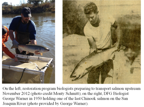 Comparative San Joaquin River Fish Releases.png