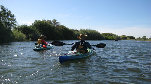 Discovering Life Along A River Of Local And National Importance NRDC - Importance of rivers