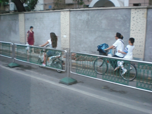 bike lane fence.jpg