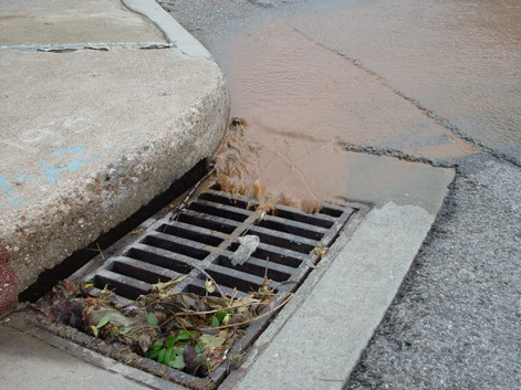 Take Action Tell The Epa To Stop Delaying Amp Issue New