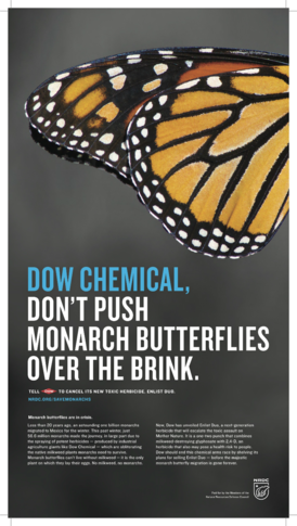 monarch-print-ad-broadsheet-final-w800.png