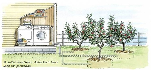 Laundry to Landscape (Elayne Sears, Mother Earth News).jpg