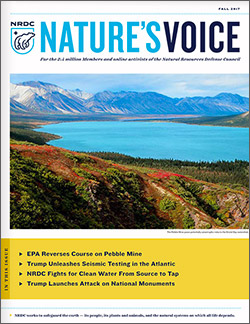 Natures Voice: Fall 2017 issue cover