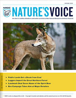 Natures Voice: Spring 2016 issue cover