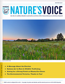 Natures Voice: Winter 2017 issue cover