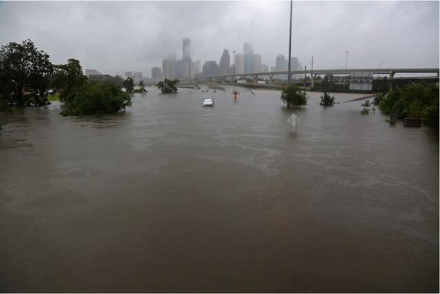 Harvey, Trump on collision course