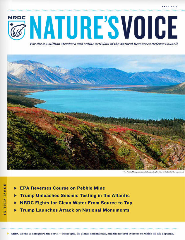 Nature's Voice Fall 2017 issue cover