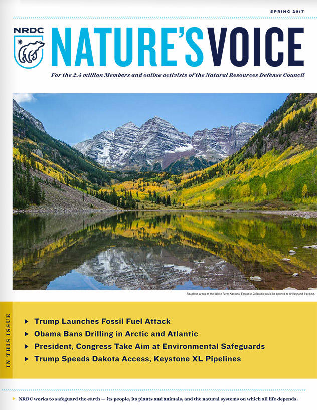 Nature's Voice Spring 2017 issue cover