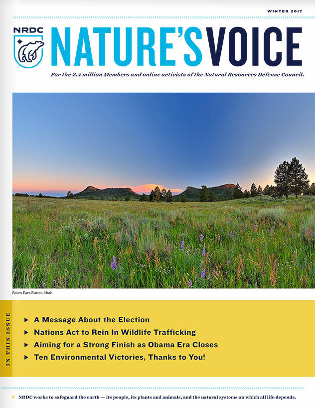 Nature's Voice: Winter 2017