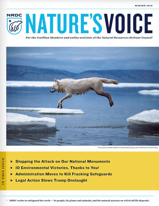Nature's Voice - Winter 2018 Issue