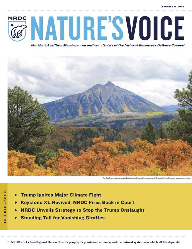 Nature's Voice Summer 2017 issue cover