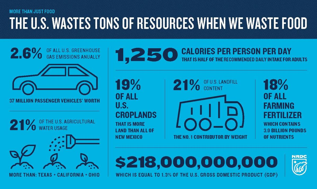 Greenhouse Effect Infographic